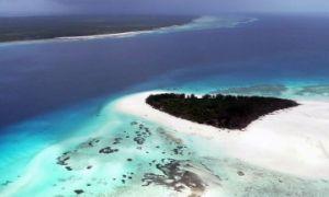 DAILY TRIP TO MNEMBA ISLAND